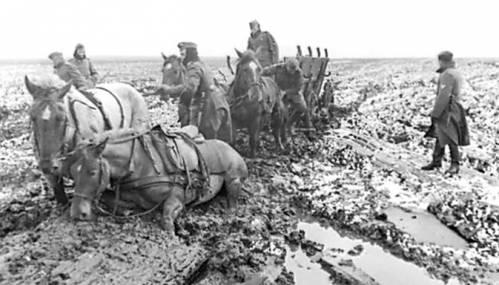 лошади немецкой армии завязли в грязи